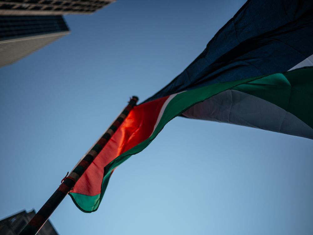 """""""Protestamos para tentar, de alguma maneira, liberar Gaza. Mesmo que a gente não viva no país, ele vive em nós."""""""