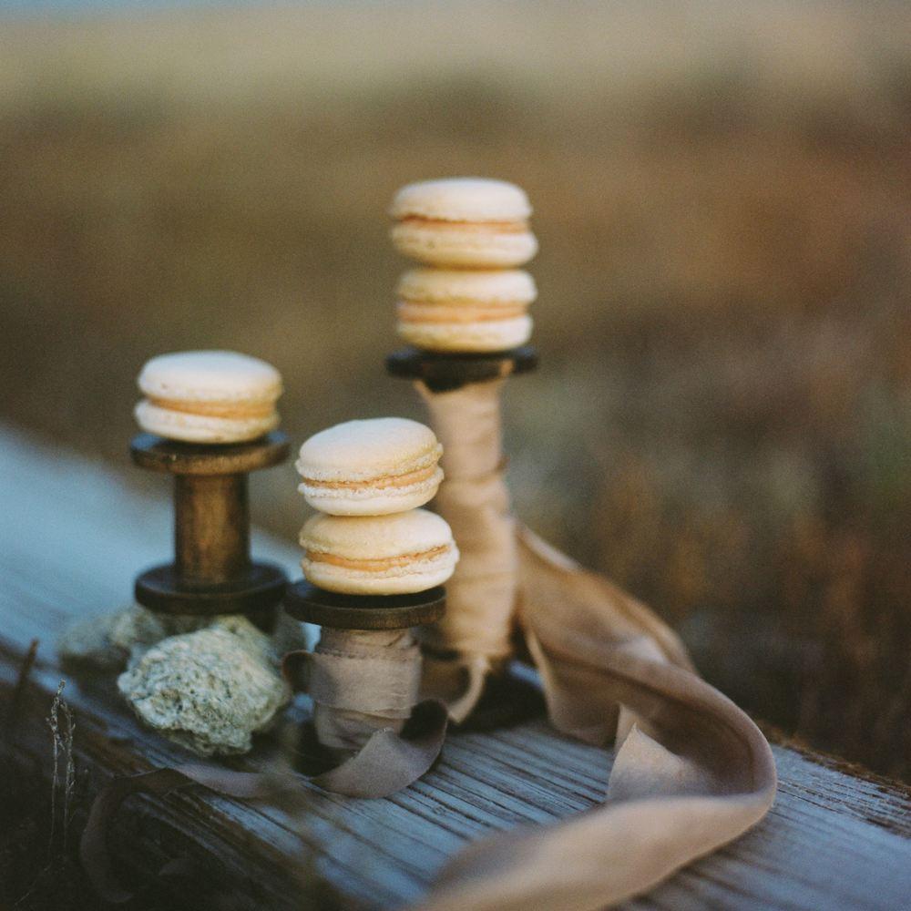 Soil & Stem | Blog