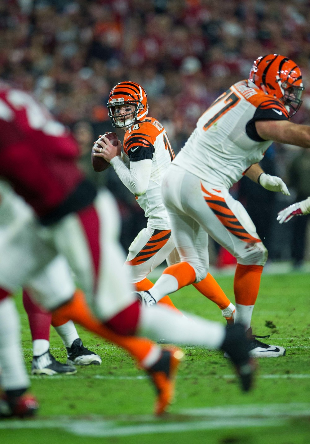NFL_31.jpg