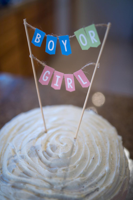baby gender reveal anouncment  106422.JPG