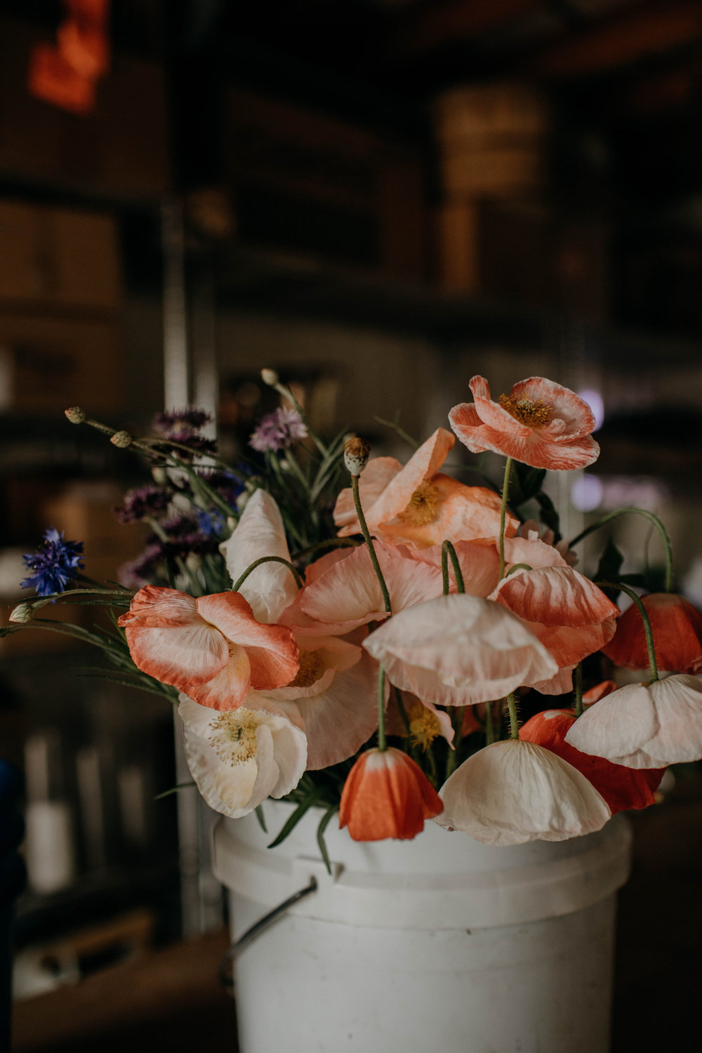 nashville floral workshop nashville tennessee wedding photographer38.jpg