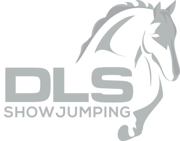 New DLS Logo.jpg