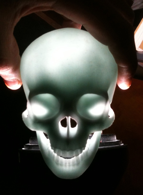3D printed glass skull, illuminated.