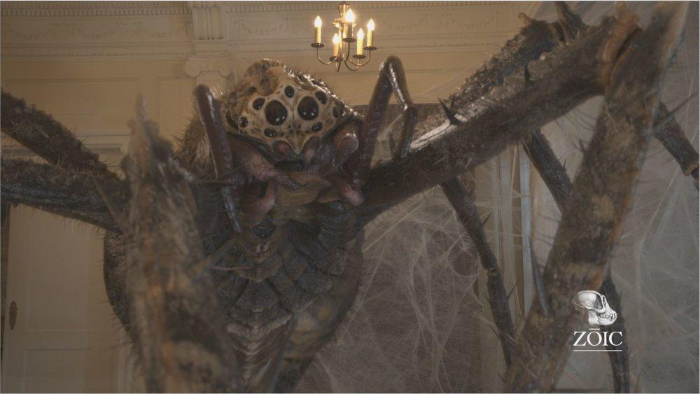 spider004.JPG