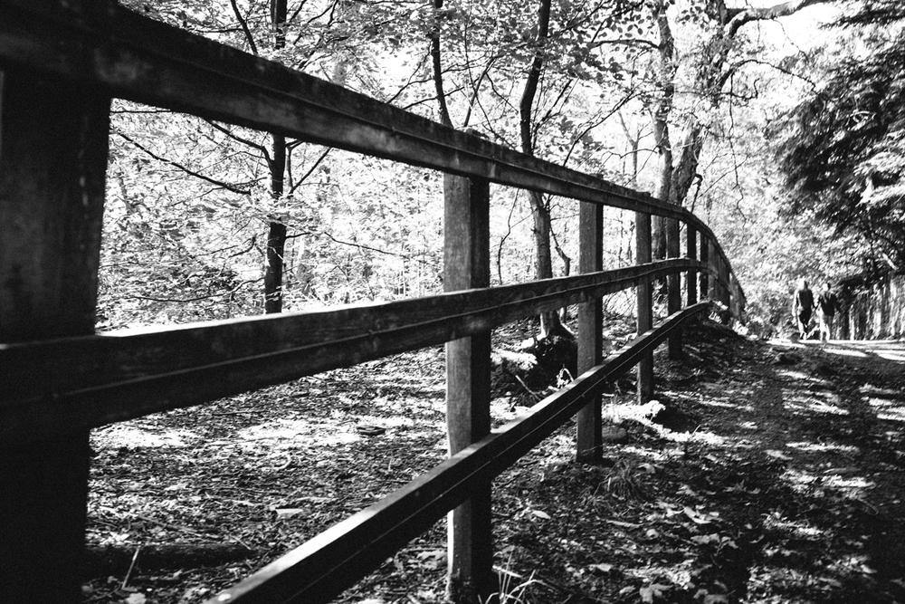 St. Ives walk--57.jpg