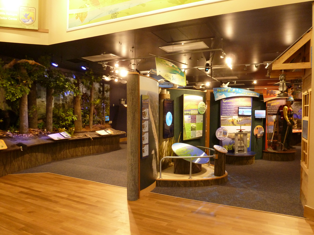 The exhibit gallery is divided by freestanding, curved walls complete with fiberglass, model tree-trunk columns.