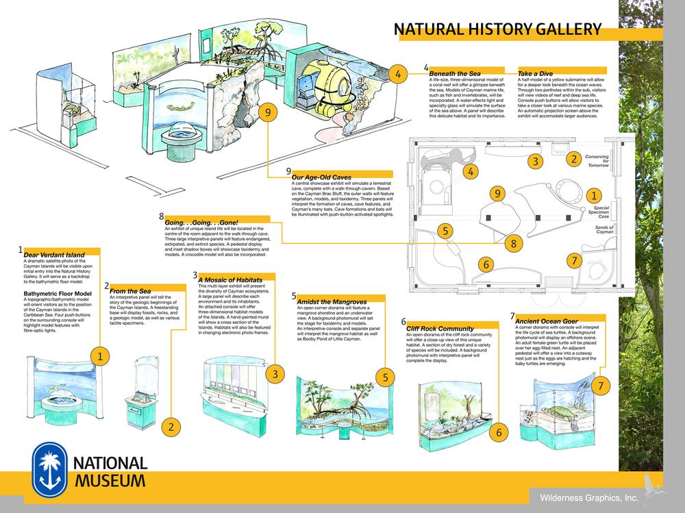 CINM_Poster_Nat Hist Gallery.jpg