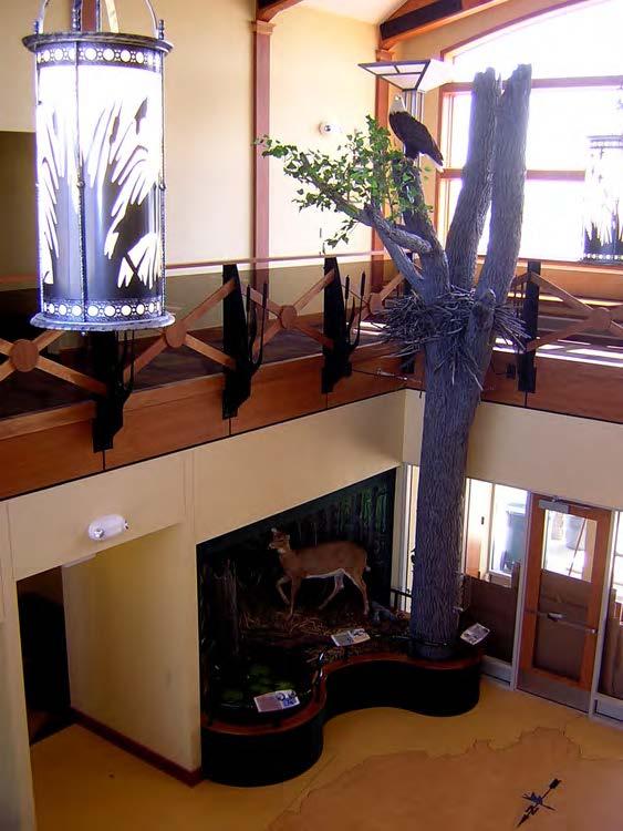 Entrance lobby habitat diorama with bald eagle nest replica and custom-fabricated pendant lighting.