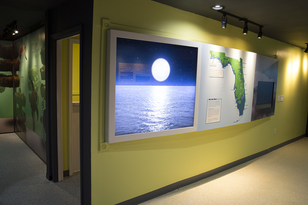 Here, we turned a window into a display case that uses backlit LEDs to enhance the impression of a moonlit beach, as well as an LCD flat screen and map of Florida.