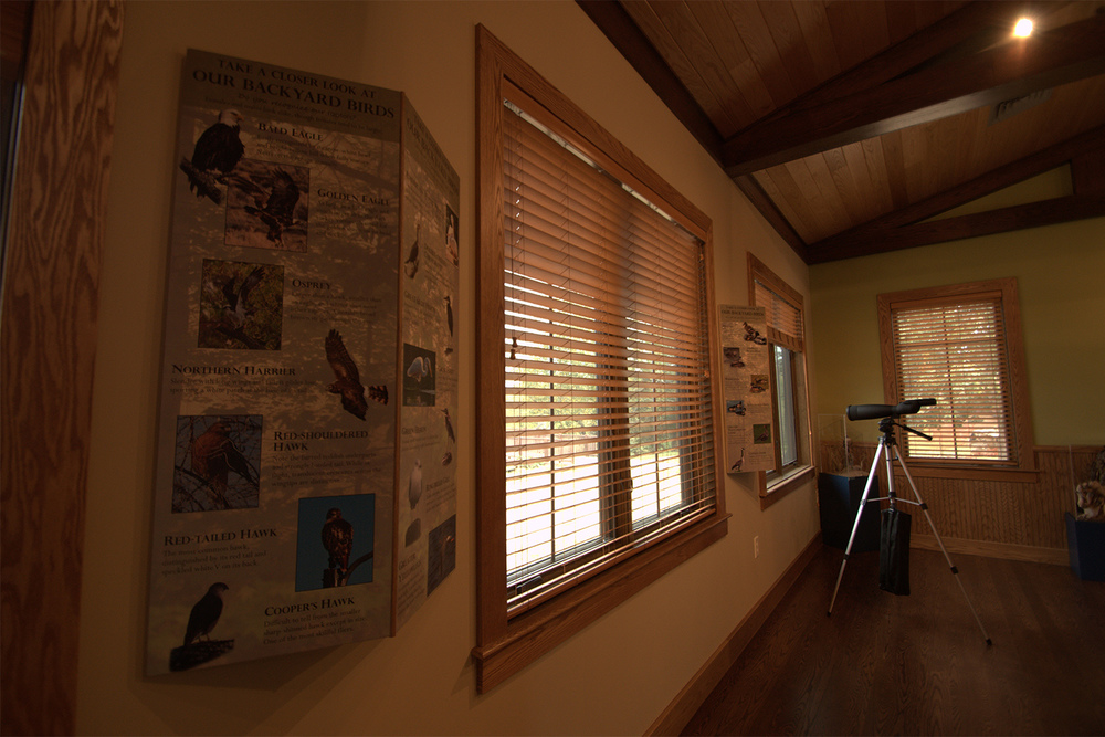 Here are some custom panels highlighting a few of the many birds seen at Cross Creeks.