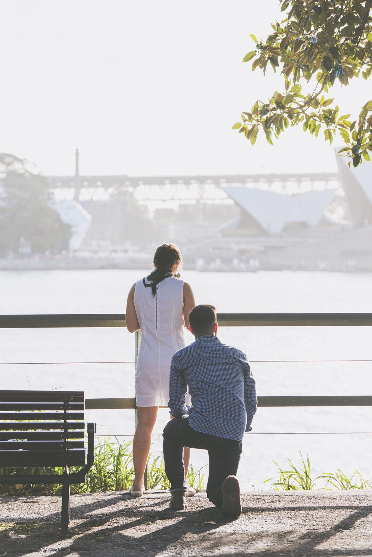 surprise-proposal-photographer