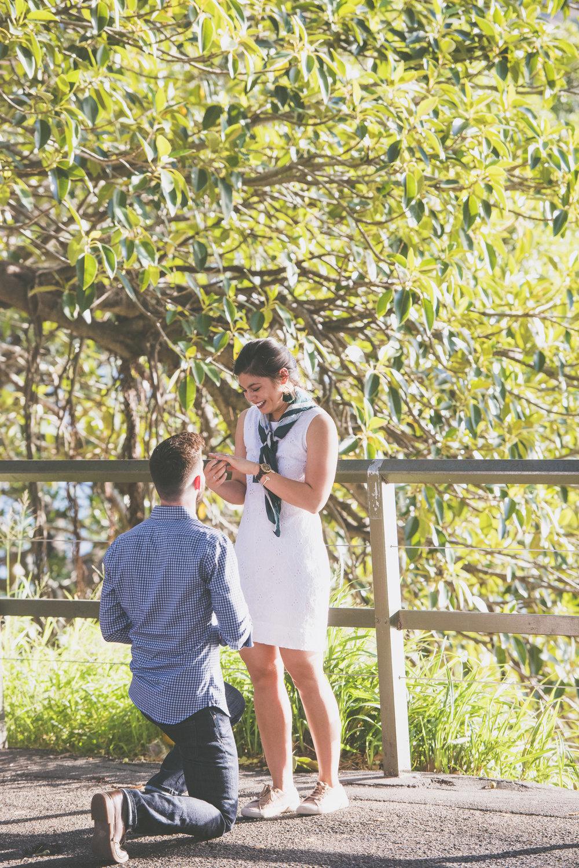 surprise-proposal-photographer-sydney