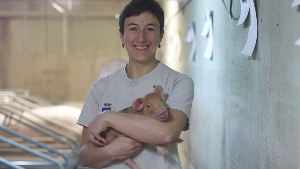 Agnes, Pig Midwife