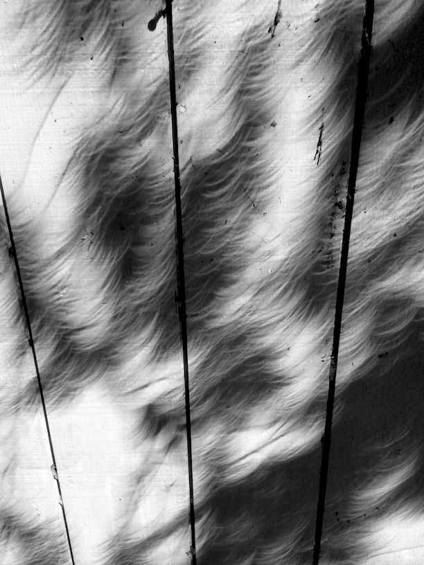 Eclipse shadows on the garage wall