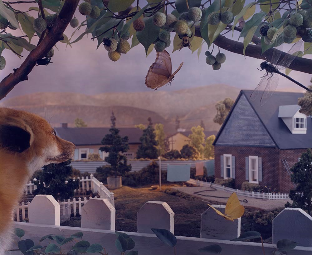 Gregory Crewdson,  Untitled , from the series  Natural Wonder , 1992, chromogenic print, the Museum of Fine Arts, Houston