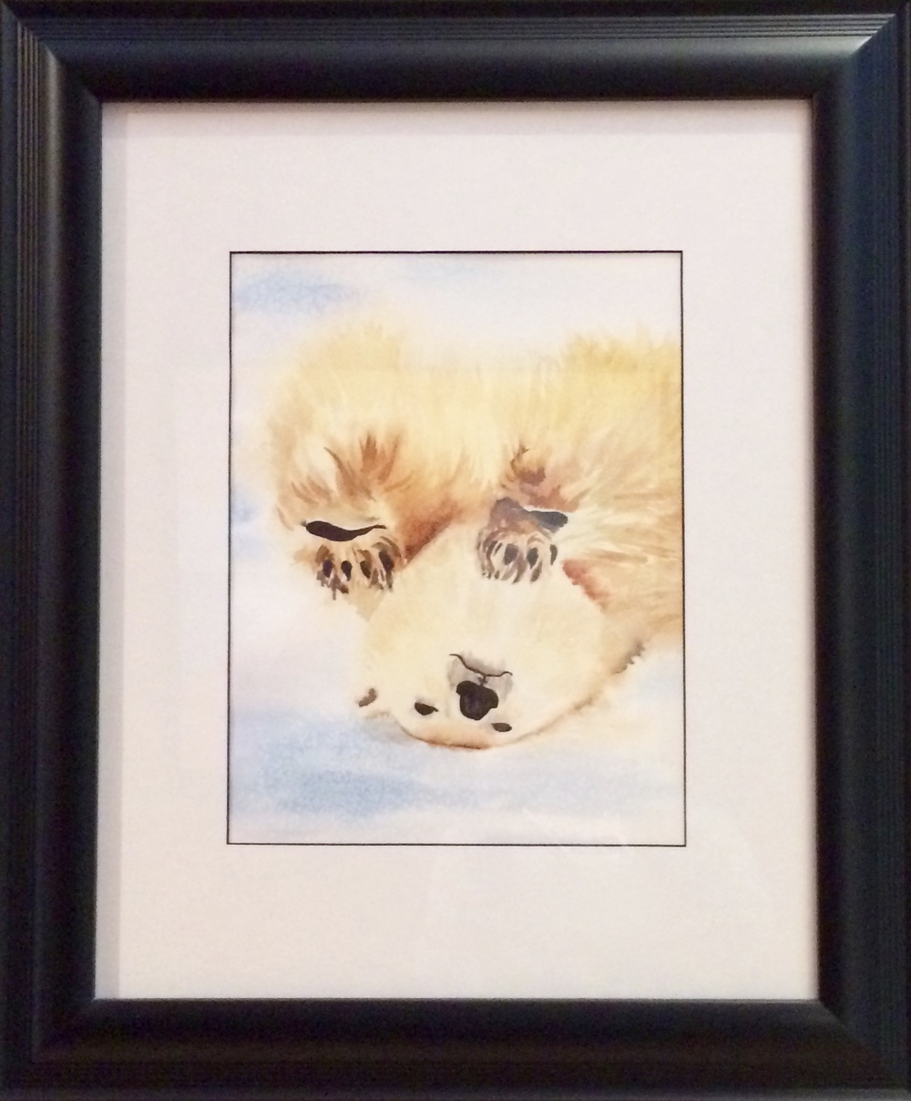 Watercolor bear.