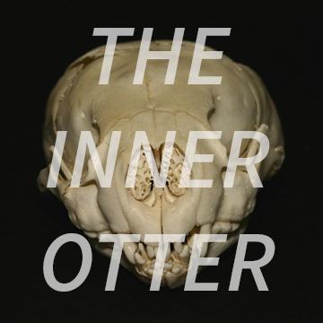TheInnerOtter.com