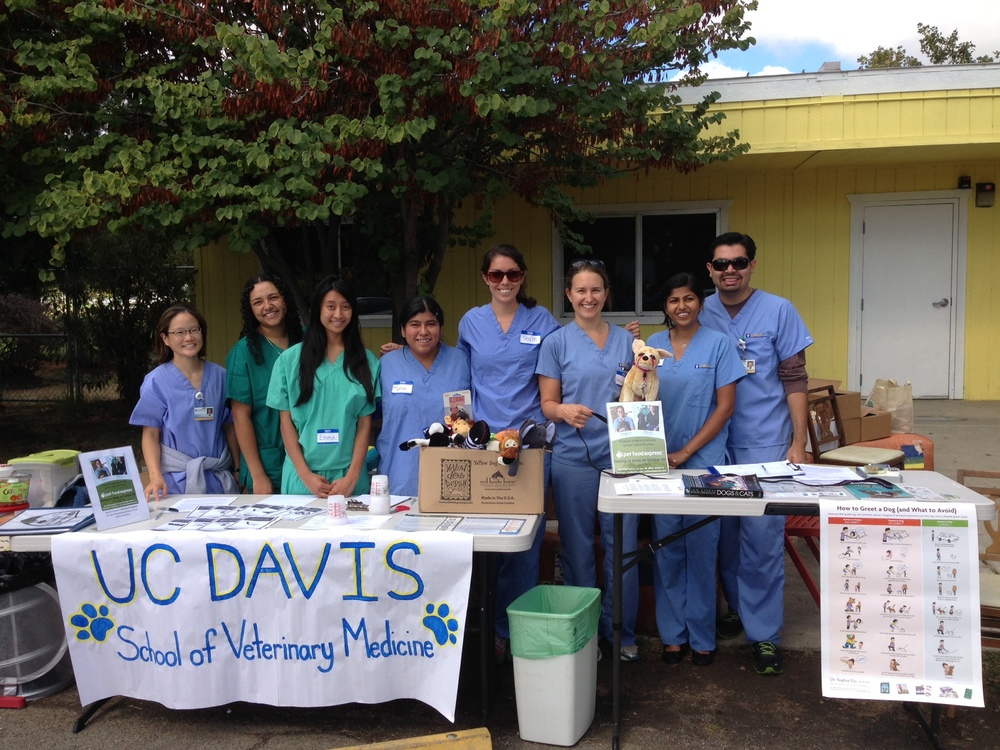 UCD veterinary students at the One Health Fair in Knights Landing, CA | Photo by Paulina Zielinska