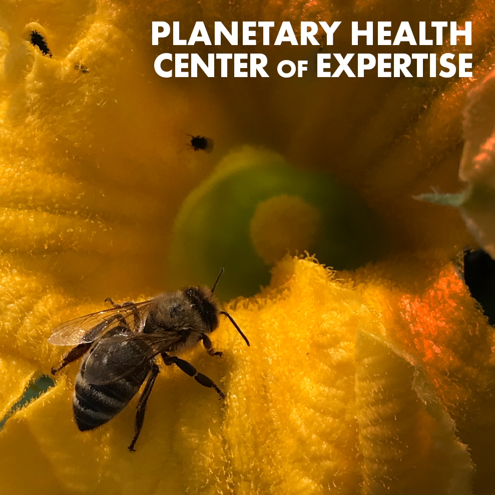planetary-health-coe-icon.jpg