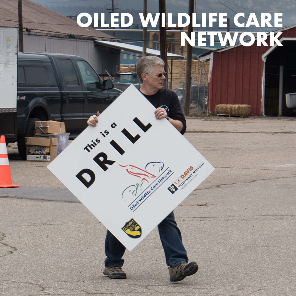 oiled-wildlife-care-network-icon.jpg