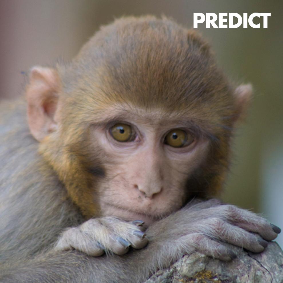 PREDICT-ICON.jpg