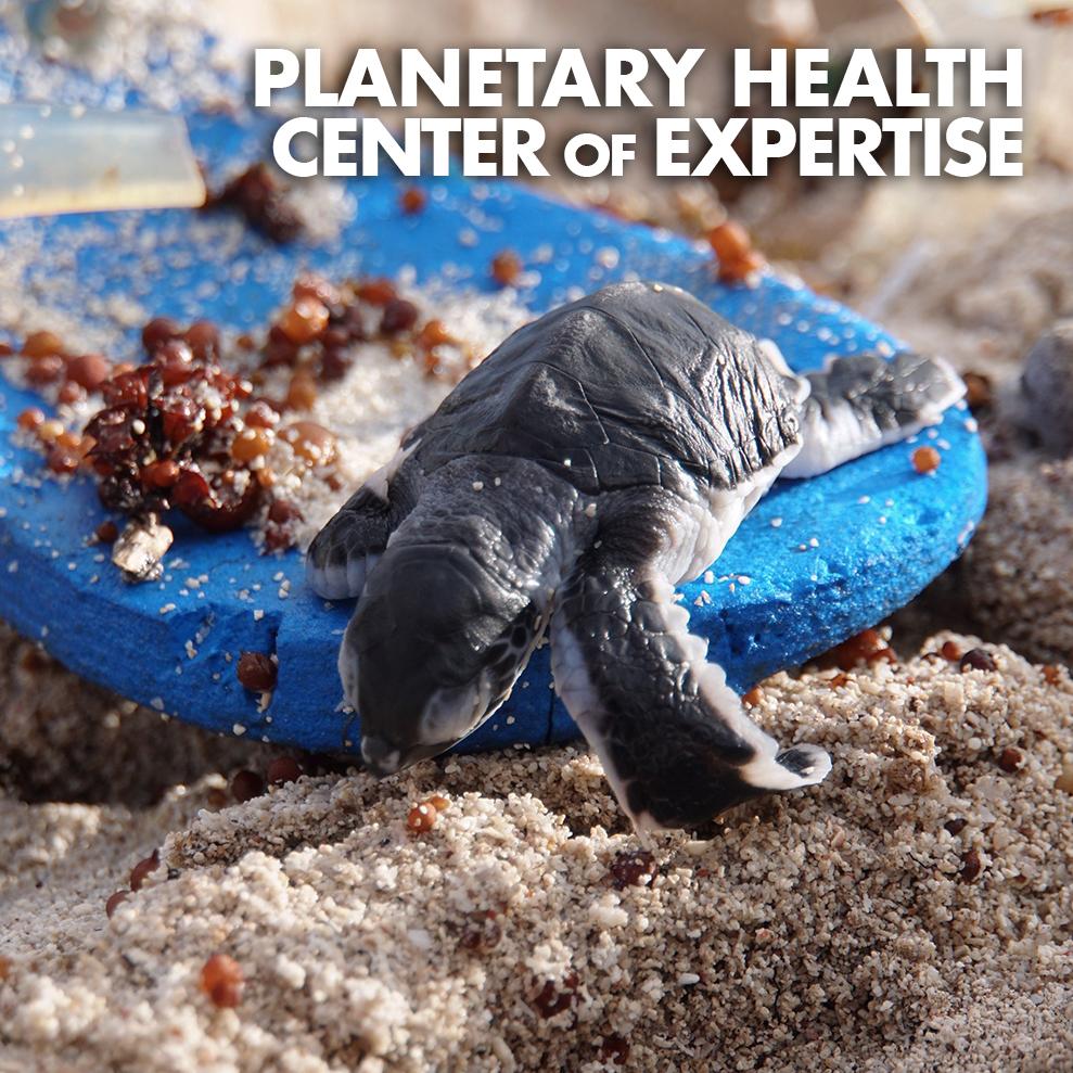 PLANETARY HEALTH COE-ICON-ALT.jpg