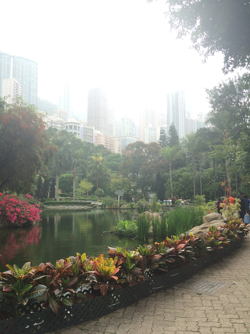 Hong Kong Park's Artificial Lake
