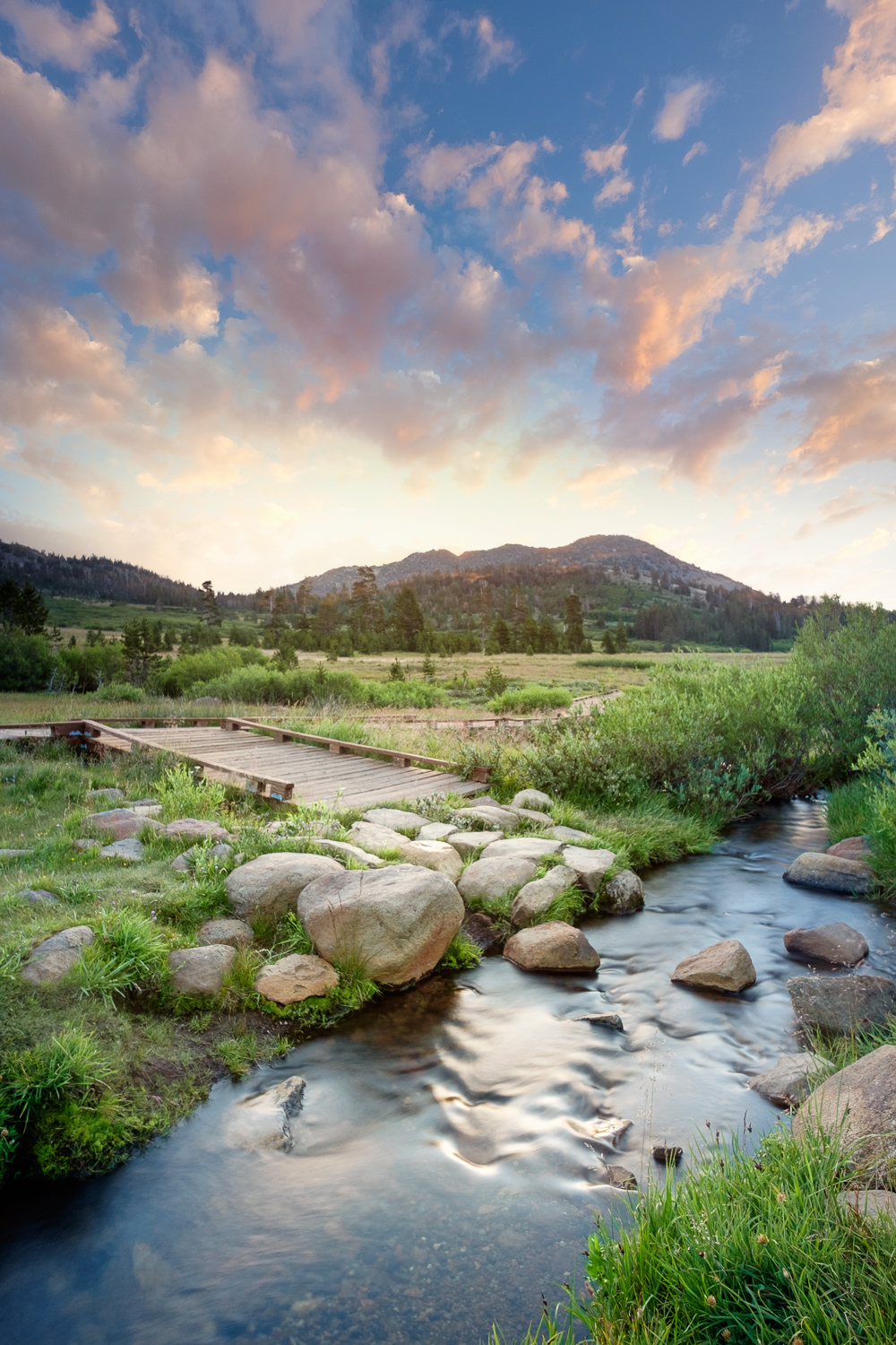 Ophir Creek runs through Tahoe Meadows at sunrise