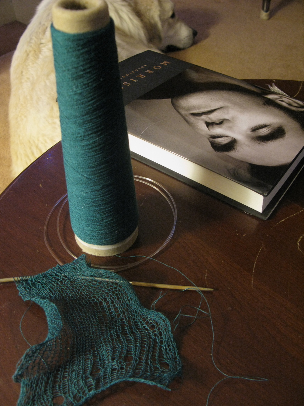 The beginning of the drop stitch scarf plus and early Christmas present from the Jor Jor--Morrissey's autobiography. Both are so beautiful :)