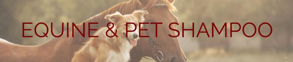 horse-dog-shampoo.jpg