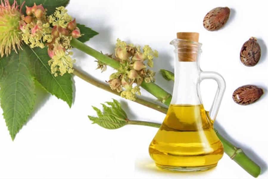castor-seed-oil.jpg