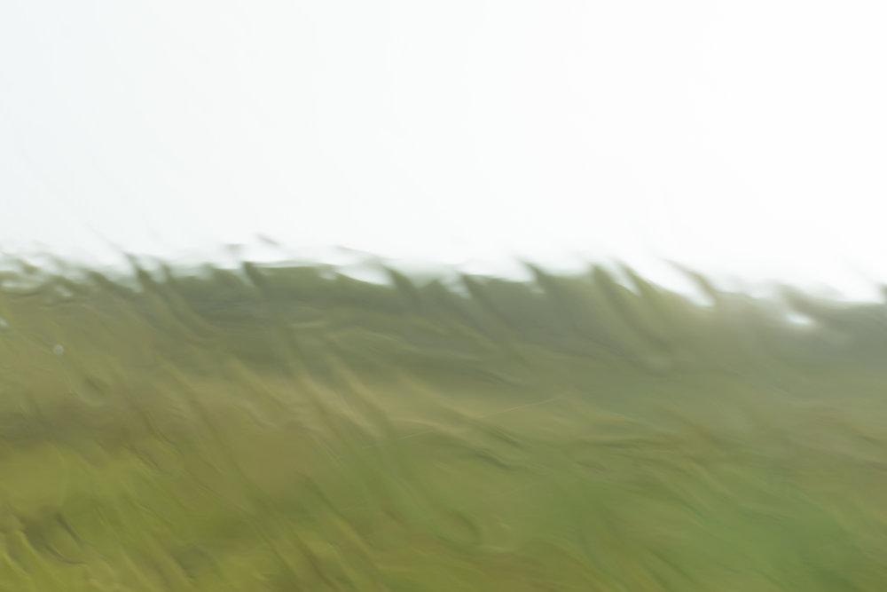rain-4.jpg
