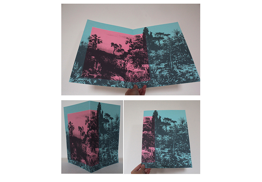 'Efflorescence' book project / Silkscreen Print
