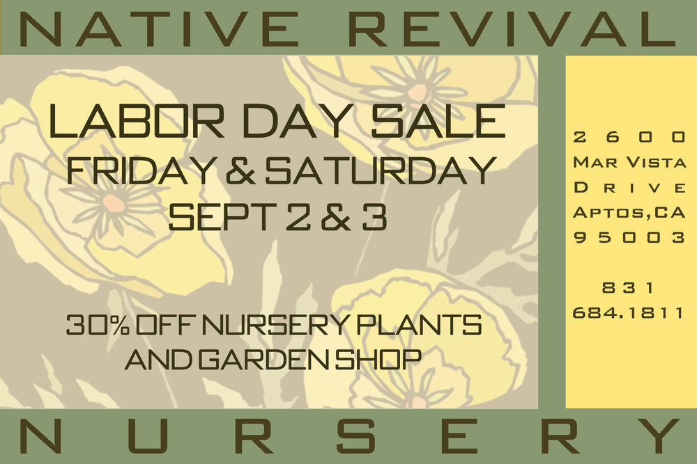 Nursery hours: Friday 9-5 and Saturday 10-4