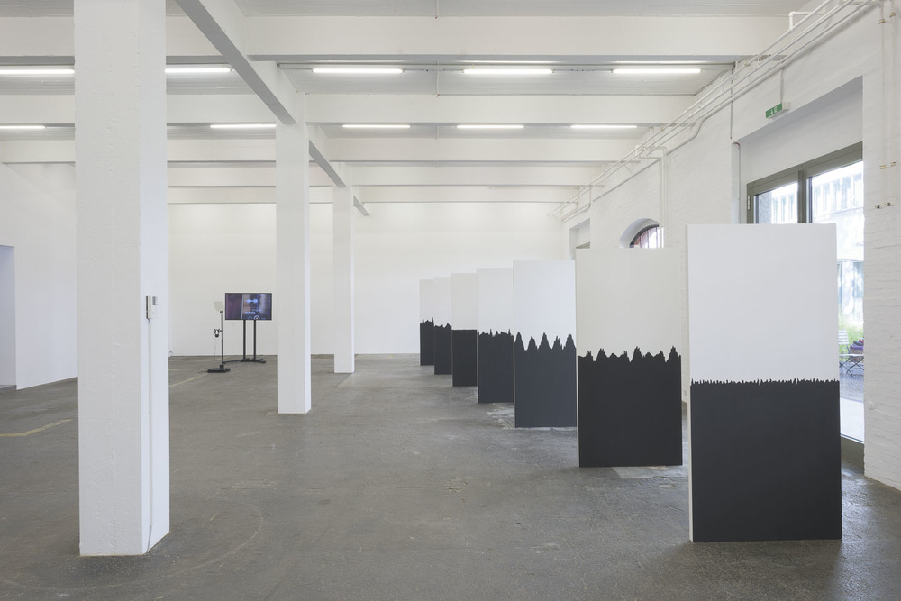 Taqiyya : the right to Duplicity Installation view at Kunst Halle St Gallen2015