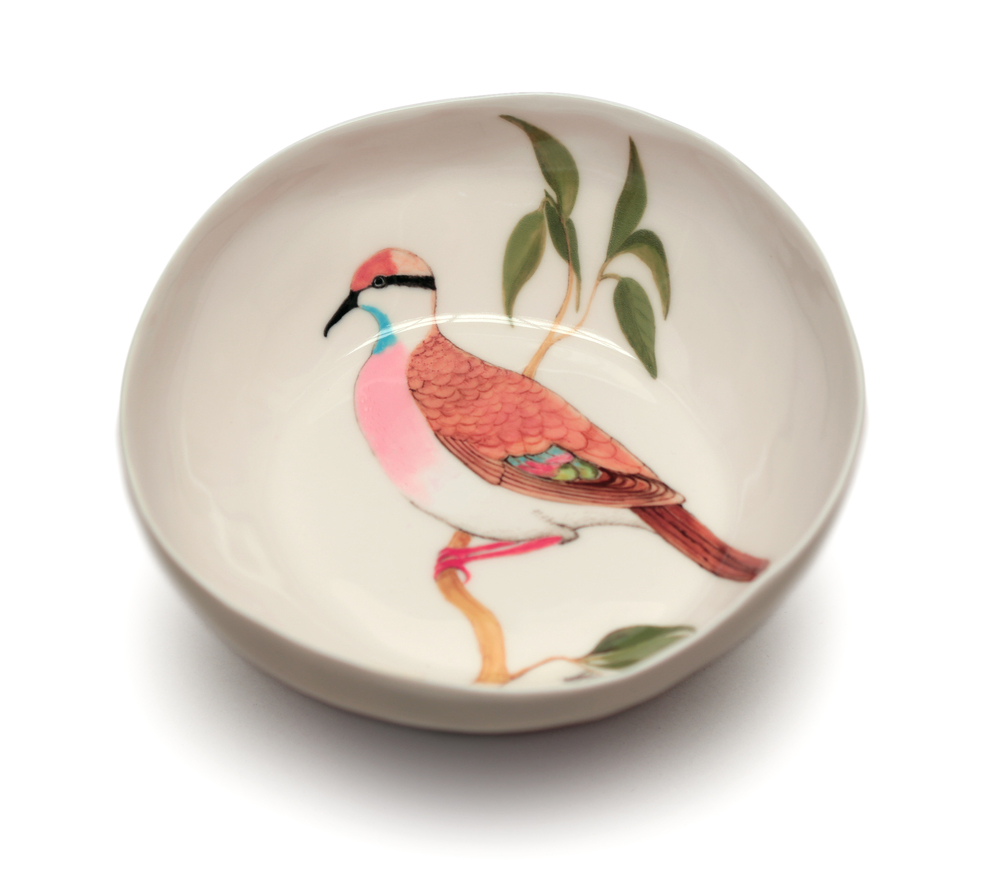 'Brush Bronzewing and Red-tailed Phascogale bowl' 2014 Painted slip-cast porcelain.