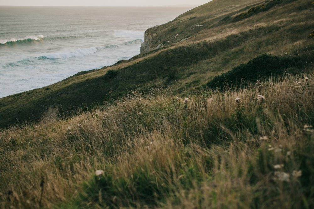 Ariana & Tim Engagement - Dunedin, New Zealand South Island - Samantha Heather Photography-72.jpg