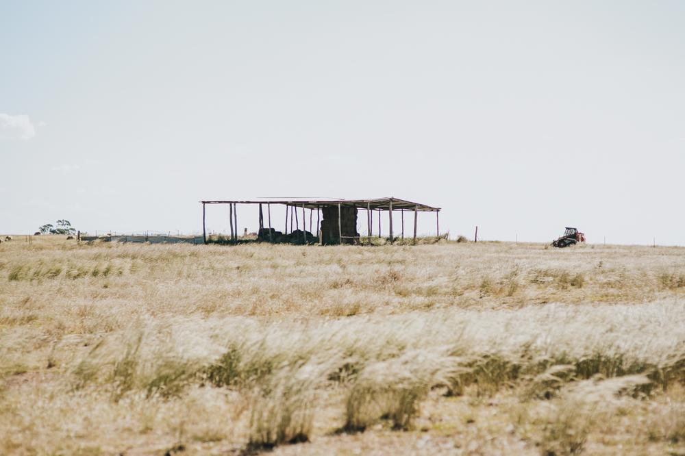 Nicolle & Jacob - Dubbo Wedding - Country Australia - Samantha Heather Photography-151.jpg