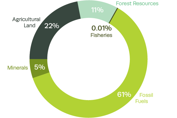 Composition of Australia's natural capital