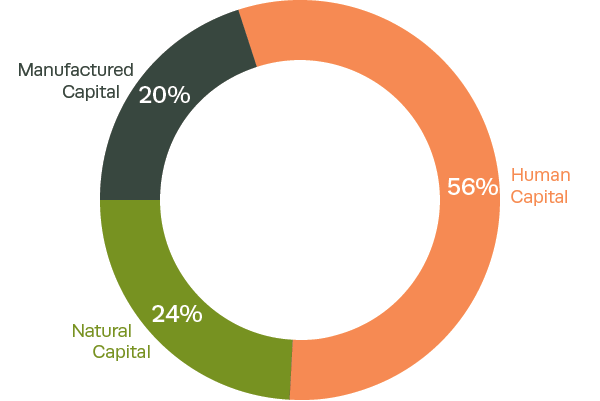 Composition of Brazil's inclusive wealth