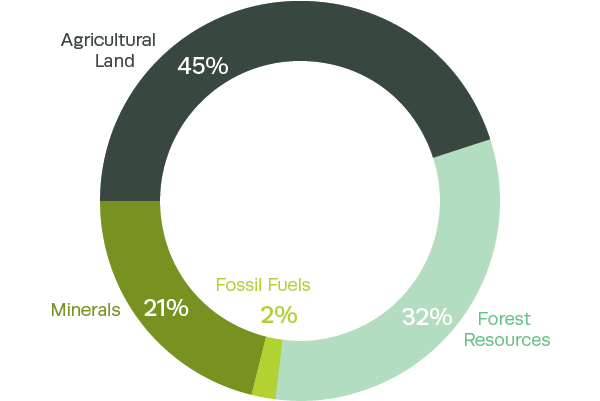Composition of Chile's natural capital