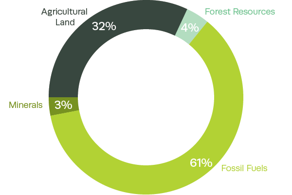 Composition of India's natural capital