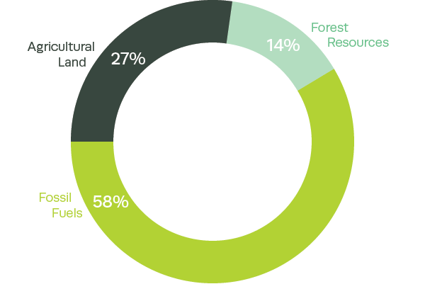 Composition of the United Kingdom's natural capital