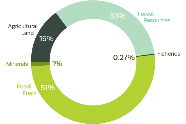 Composition of the United States' natural capital