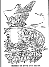 Illustration of birds dead on the pavilion below the Statue of Liberty's torch, from  Duluth Daily News , November 8, 1887