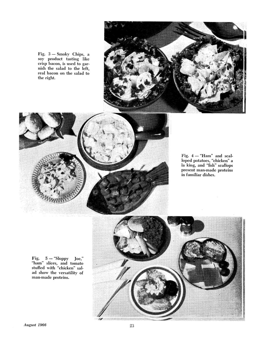 "The varied guises of spun protein foods. Image source: A.D. Odell, ""Meat Analogues — A New Food Concept,"" Cornell H.R.A. Quarterly, August 1966."