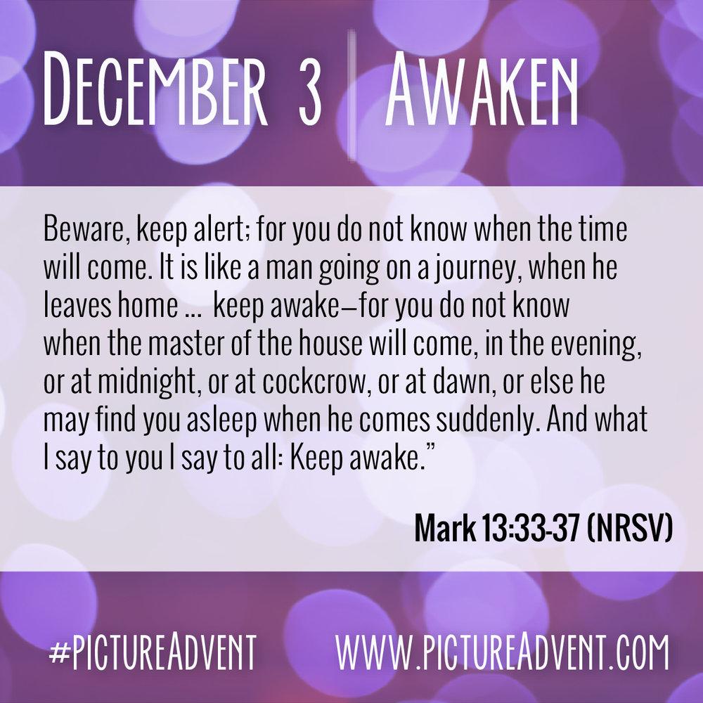 01 Dec 3 Awaken-01.jpg