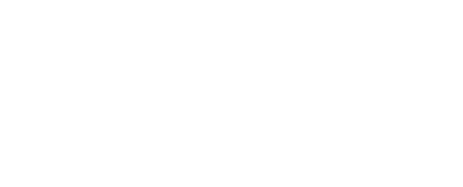 Megan Diez Salon