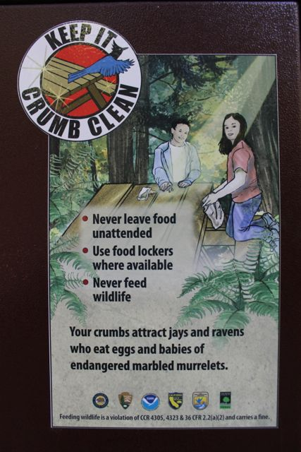 "Visitors in California State and National Parks see plenty of these signs in campgrounds, picnic areas, and at trailheads. The sign is part of the effort to reduce predation on marbled murrelets nests in the popular ""big trees"" parks where these birds nest."