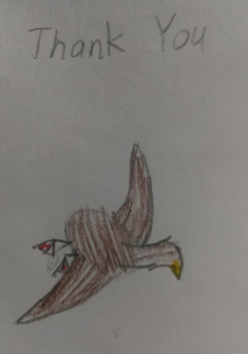 Yes, it's a Marbled Murrelet as depicted by a second-grade student.
